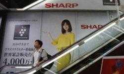 Sharp получила пятую подряд квартальную прибыль