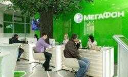 Тюльпанный фонд от «Мегафона»: механика и промежуточные итоги акции оператора к 8 марта