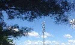 В администрации Трампа предложили национализировать 5G-сеть