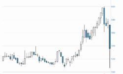 Акции «Мегафона» упали почти на 8% после рекомендации совета директоров не выплачивать дивиденды