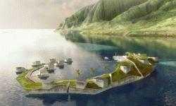 Почему идея Питера Тиля об искусственном островном государстве до сих пор не реализовалась