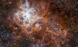 Фото дня: космический Тарантул удивительной красоты