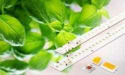 Samsung расширила ассортимент светодиодов для выращивания растений