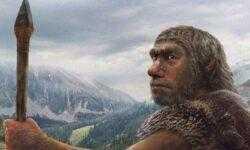 Ученые: «К концу 2018 года мы вырастим мозг неандертальца»