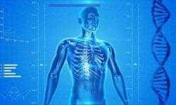 Учёные из РФ разрабатывают технологию печати имплантов нового поколения