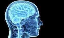 Делаете энцефалограмму? Возможно, в будущем с вас будут снимать биометрические данные