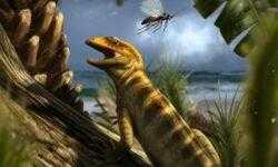 Найден первый предок змей и ящериц, живший 240 миллионов лет назад