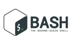 Насколько хорошо ты знаешь bash?