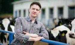 «Не верю в нейросети — верю в человеческий ум»: физик-теоретик создал для фермеров датчики половой охоты коров Ovi-Bovi