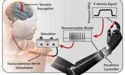 В Университете Джонса Хопкинса создали искусственную кожу, которая чувствует боль