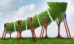 Внедрение IdM. Процедуры и технические средства — от базовых до IdM