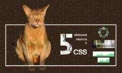 5 приемов работы с CSS, о которых вам следует знать