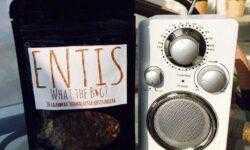 Финский стартап по производству сладостей и смузи из насекомых Entis привлёк €200 тысяч