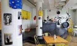 Истории предпринимателей, которые организовали котокафе в своих городах