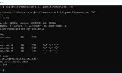 Крестики-нолики на DNS