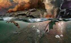 Ученые предложили еще одно объяснение самому массовому вымиранию в истории Земли