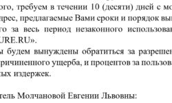 Сооснователи издания BigPicture Сергей Барышников и Евгения Молчанова рассорились из-за домена и долга в $73 тысячи