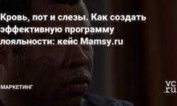 Кровь, пот и слезы. Как создать эффективную программу лояльности: кейс Mamsy.ru