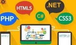 Пятничные вебинары от Skillbox: все для начинающих разработчиков