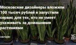Московские дизайнеры вложили 100 тысяч рублей и запустили сервис для тех, кто не умеет ухаживать за домашними растениями