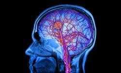 Новая компьютерная архитектура по типу мозга может улучшить методы обработки данных