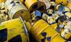 Обнаружены бактерии, которые могут уничтожать ядерные отходы