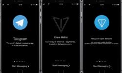 Павел Дуров запустит блокчейн-платформу Telegram уже этой осенью