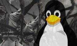 Эльфы в памяти. Выполнение ELF в оперативной памяти Linux
