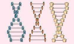 «Сделать ДНК-тест проще, чем сходить к терапевту или зубному»