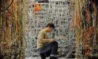 Сетевое оборудование должно быть стабильным: результаты опроса 3DNews