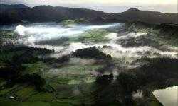 Азоры: последний резерв флоры в середине Атлантического океана