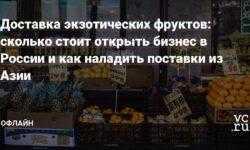 Доставка экзотических фруктов: сколько стоит открыть бизнес в России и как наладить поставки из Азии