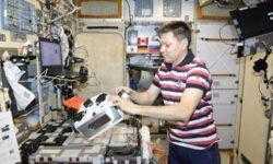 МКС-эксперимент «Магнитный 3D-биопринтер» признан успешным