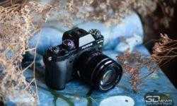 Новая статья: Обзор беззеркальной камеры Fujifilm X-T3: незаметный прорыв