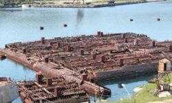 Японский ядерный могильник в Приморье или место утилизации АПЛ Тихоокеанского флота