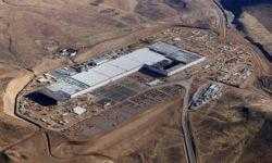 Маск пообещал инвесторам начать массовое производство Model Y в следующем году