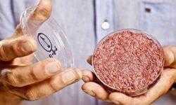 Производство искусственного мяса не принесет пользы окружающей среде