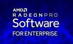 Radeon VII получит поддержку драйвера Radeon Pro Software, но проку от этого будет немного