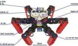Учёные создали робота-муравья с полностью автономной навигацией без GPS