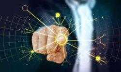 В России появится Лаборатория нейронаук и поведения человека