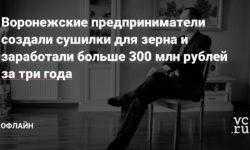 Воронежские предприниматели создали сушилки для зерна и заработали больше 300 млн рублей за три года