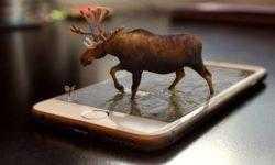AR-гарнитуре Apple для работы потребуется iPhone