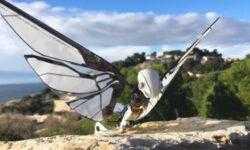 Этот робот почти неотличим от живых насекомых: взгляните сами