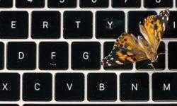 Попытка №3: Apple так и не решила проблемы с клавиатурами MacBook