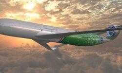 В самолетах будущего будет виртуальная реальность, студии йоги и цветная капуста