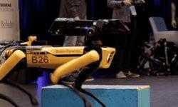 Boston Dynamics продемонстрировала производственную версию робота SpotMini