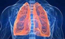 Из-за сильного гриппа в легких могут вырасти вкусовые рецепторы