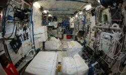 Специалисты NASA выяснили, что МКС «кишит болезнетворными бактериями»