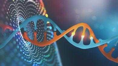 Фото Будущее генной инженерии ближе, чем вы думаете