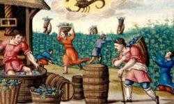 Керамическая посуда рассказала, что ели средневековые крестьяне